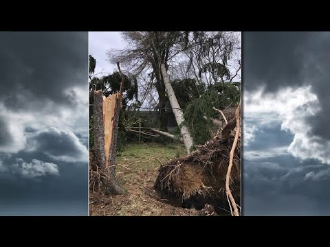 Stark County storm damage