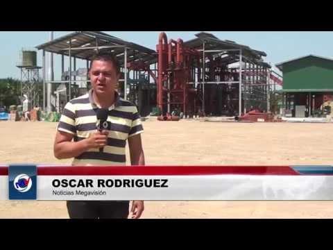 Baja de  precio aceite de palma preocupa a productores en Honduras