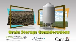 Evaluating Grain Storage Options for Farmers