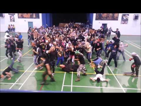 Harlem shake (geroskipou high school)