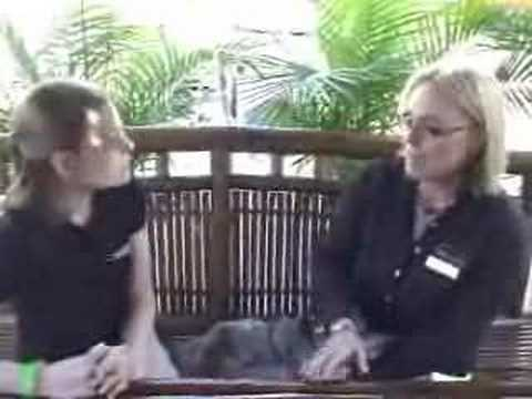 Catamarans.com: Talking Financing at the Miami Boat Show