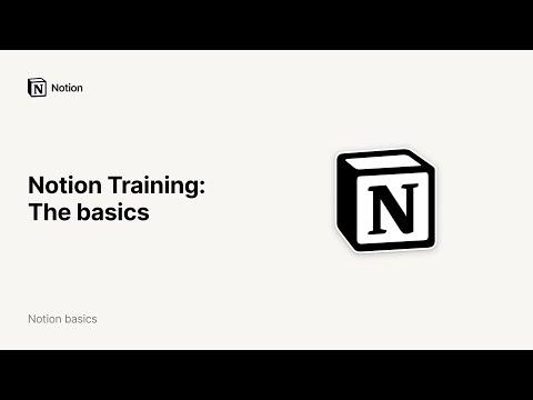 Notion Training: The Basics
