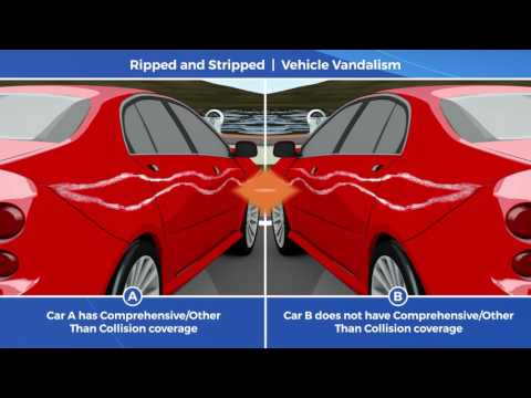 Car Insurance Tip Video: Vandalism Coverage is Key