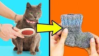 видео Одежда для Кошки Своими Руками
