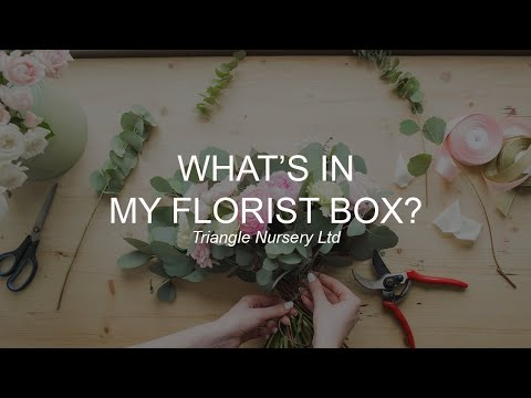 Whats In My Florist Box? Essential Tools You Will Need