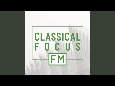 Vivaldi Variation (Arr. for Piano from Concerto for Strings in G Minor, RV 156)