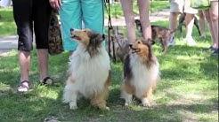 Pets in the Park - Saskatoon, Saskatchewan