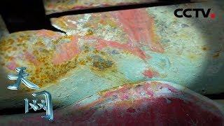 《天网》 一抹红漆:卖菜老人深夜被撞生命垂危 车上的一抹红漆成了唯一线索 | CCTV社会与法