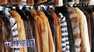 [中国新闻] 美国多个城市将禁售皮草 相关产业或受打击 | CCTV中文国际