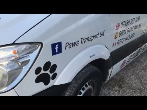 www.pawspettransport.com paws pet transport Animal Courier uk to Spain paws animal Transport