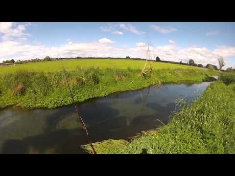 Sea Run Trout And Smelt Fishing Ashley River NZ