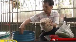 【南瓜粉製作】「南瓜粉製作」#南瓜粉製作,20141027自製天然...