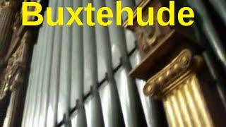 Komm heiliger Geist Herre Gott  Buxwv 199 - Buxtehude (Aldo Locatelli)