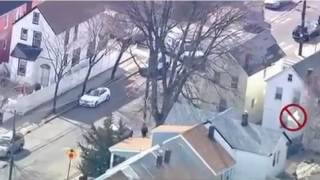 Bull Runs Loose In Jamaica Queens Ny Watch Police Chase Bull Queens New York Escaped Slaughterhouse