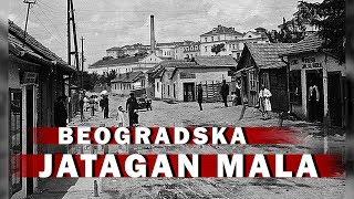Beograd slike prostitutke Seks srbija