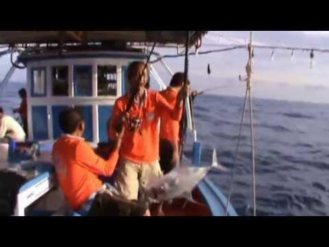 ตกปลา ทะเลตราด ตอนที่ 3 (ตอน 30 ไมล์ ตะวันออก) By Roj Fishing