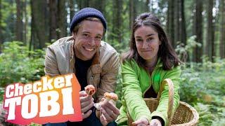 Der Pilz-Check | Reportage für Kinder | Checker Tobi