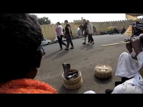 India, Jaipur: (Ep.60) Cobra Dance on the Street--Jaipur