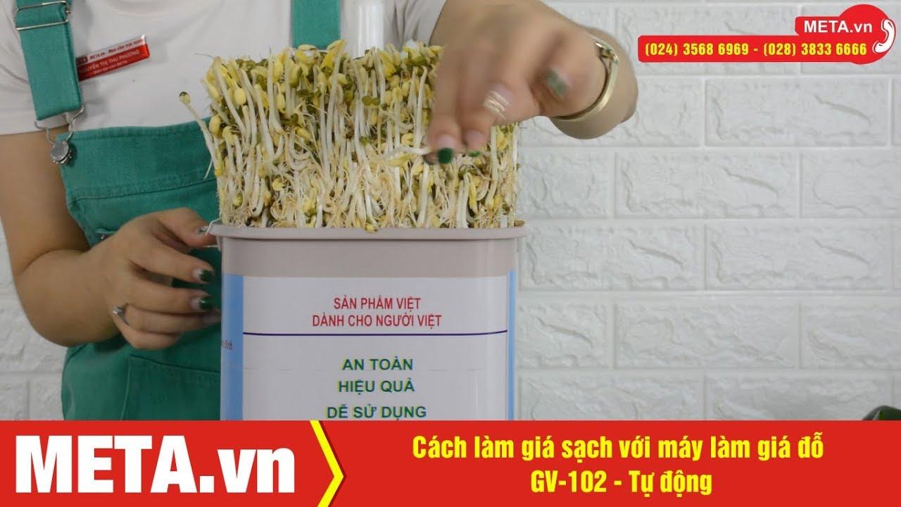 Cách làm giá sạch với máy làm giá đỗ GV-102 – Tự động (phiên bản mới)