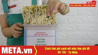 Cách làm giá sạch với máy làm giá đỗ GV-102 - Tự động (phiên bản mới)