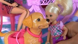 Видео с куклами, дом Барби, серия 490, у Келли появилась собака
