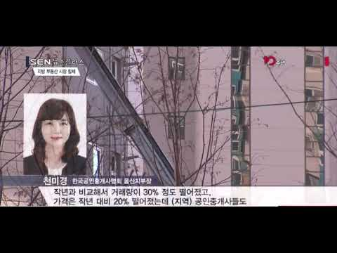 [SEN TV]사실상 개점휴업… 우울한 지방 부동산
