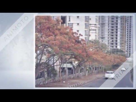 MALAYSIAN TOWNSHIP KPHB HYDERABAD RENTAL FLATS PH,8686124953