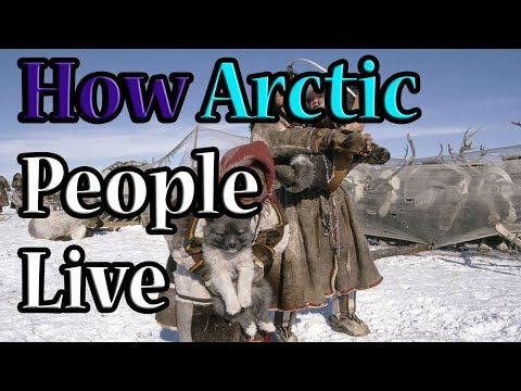 How Arctic People Live in the cold