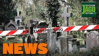 Polizei erschießt Jäger, Jagdscheinentzug nach Wilderei, Wolfs-Zahlen - DJZ-News 18/2019