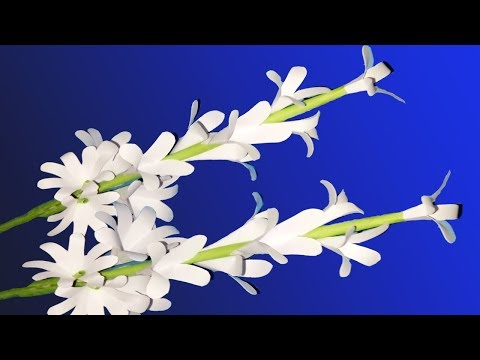 Diy Tuberose Paper Flowers| Easy Flowers Making With Color Paper |Zinat Crafts