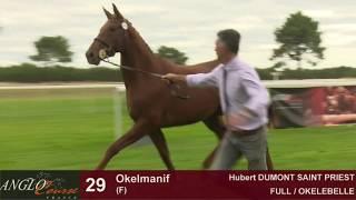 Lot 29 - Okelmanif - F13 - FULL & OKELEBELLE - Hubert DUMONT SAINT PRIEST