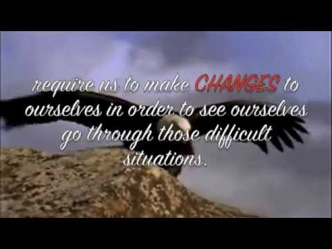 story of an eagle a very motivational story must watch youtube