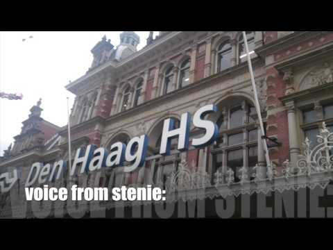 Life in The Hague