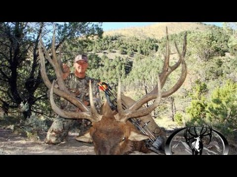 FREE RANGE - EXPEDITION HUNTING TRIPS IN NEW ZEALAND from YouTube · Duration:  2 minutes 13 seconds