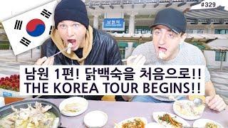 남원 1편!! 닭백숙과 죽을 처음 먹어본 미국 모델의 반응?! (329/365) Namwon Ep.1!! THE KOREA TOUR BEGINS!!