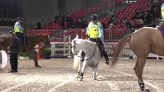 Salon du cheval 2015 - Garde Républicaine mov