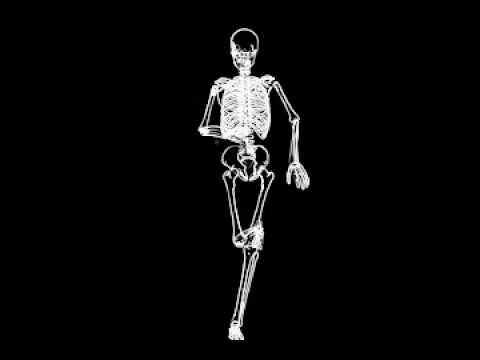 skeleton running - youtube, Skeleton
