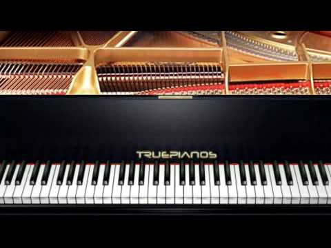 pianolesdenhaag: kleine vogel
