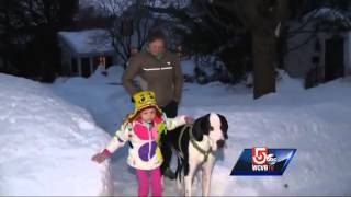 Service dog gives girl with rare disease a helping hand