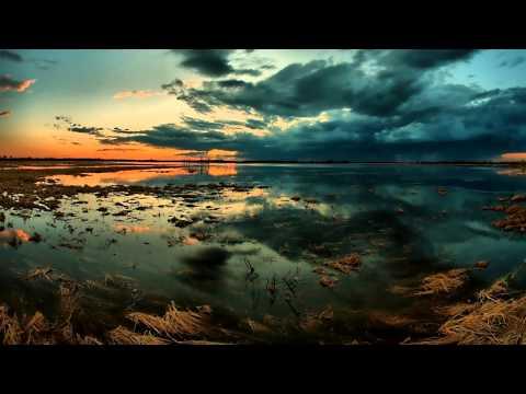 Adham Shaikh & Tim Floyd - Estuary / Snakedance