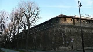 Yves Duteil - Le mur de la prison d
