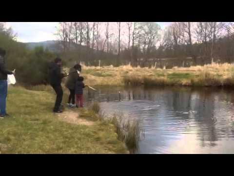Samuel Fishing- Aviemore