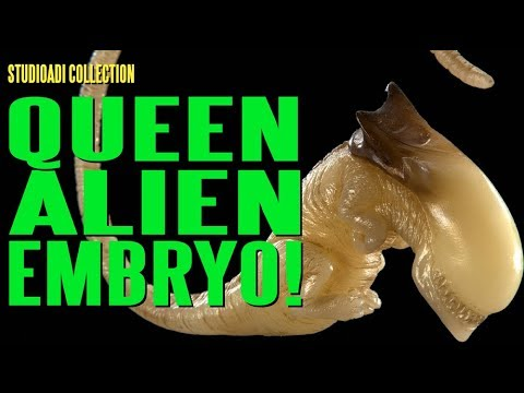 The studioADI Collection - Queen Alien Embryo