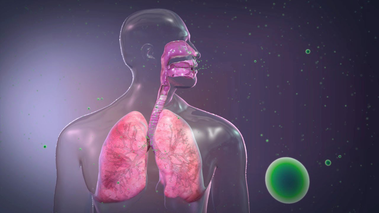 Normal Concentrations and Respiratory Physiology - YouTube