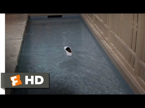 The Party (3/11) Movie CLIP - If the Shoe Floats (1968) HD