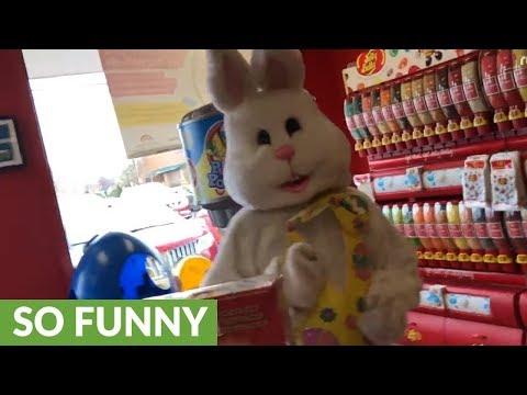 Kid terrified of creepy Easter bunny mascot