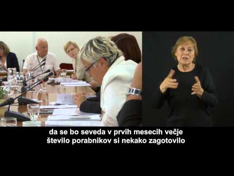 Državni Zbor - ZIMI