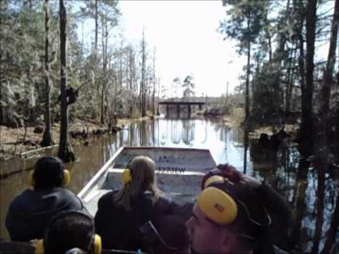 Airboat ride Pascagoula Ms