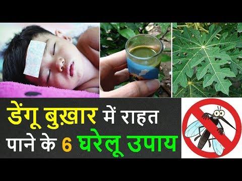 Dengue Fever Ayurvedic Treatment in Hindi : Top 6 Home Remedies