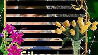 Dj Maai Teri dushman dushman Nagina Sikandar mix Hindi HD video 7506129921